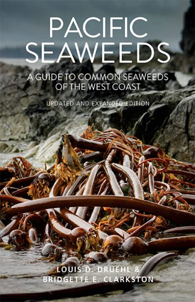 Pacific Seaweeds book cover